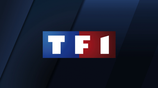TF1 Yuzz Case : changing effortlessly video formats allows community managers to gain in effectiveness